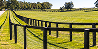 Agri Fencing & Accessories