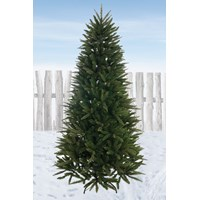 Festive  Pennine Fir Christmas Tree - 7ft